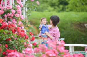 毎月開催自然の中で親子撮影会