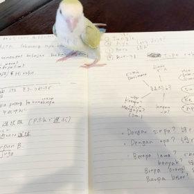 インドネシア語の勉强