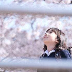 小学校入学記念撮影